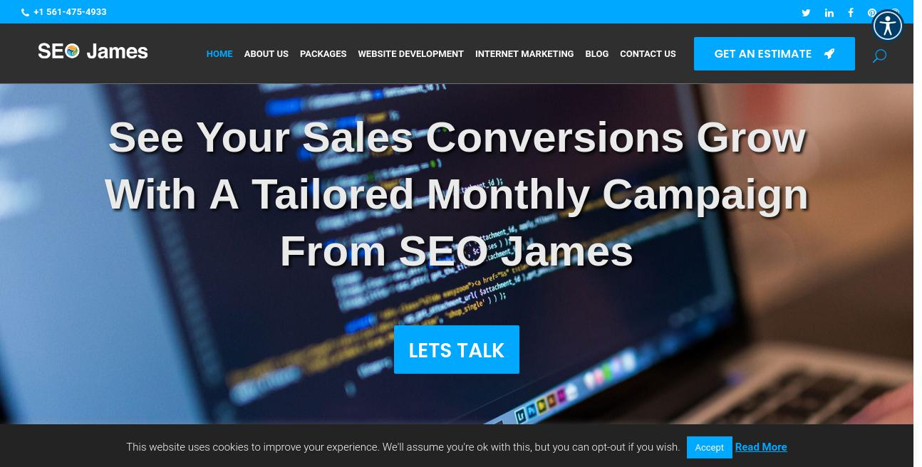 SEO James website