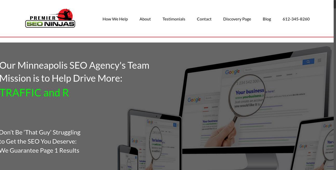 Premier SEO Ninjas website