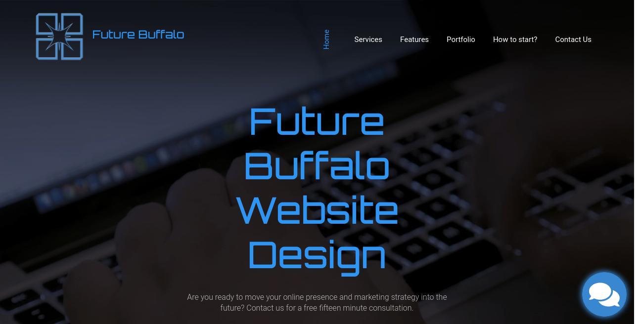 Future Buffalo Website Design website