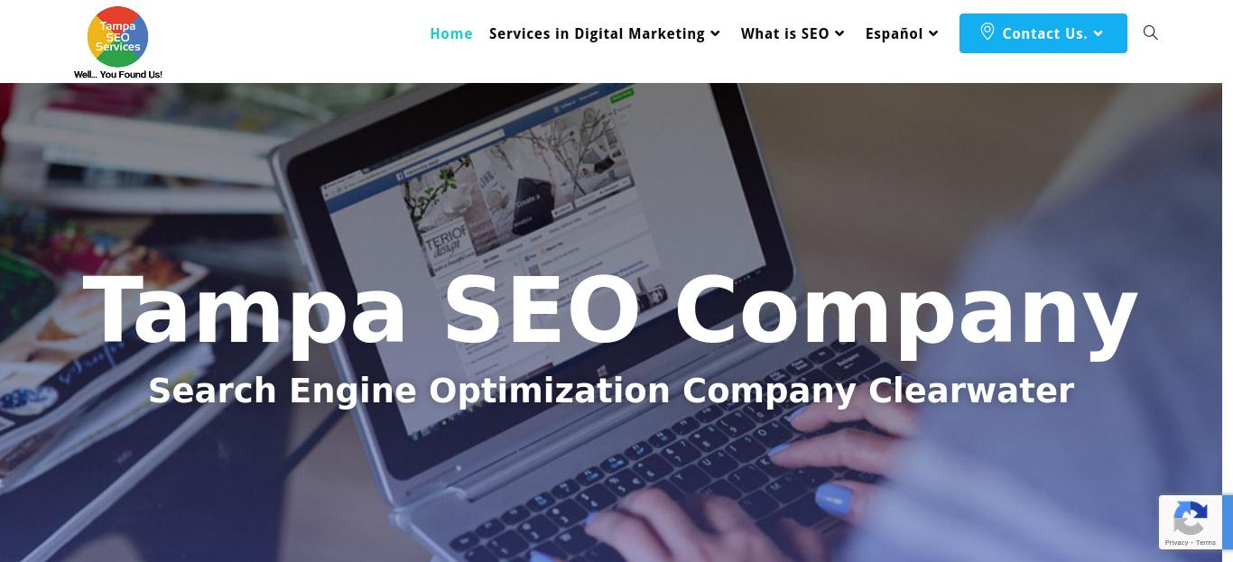 Tampa SEO Services website