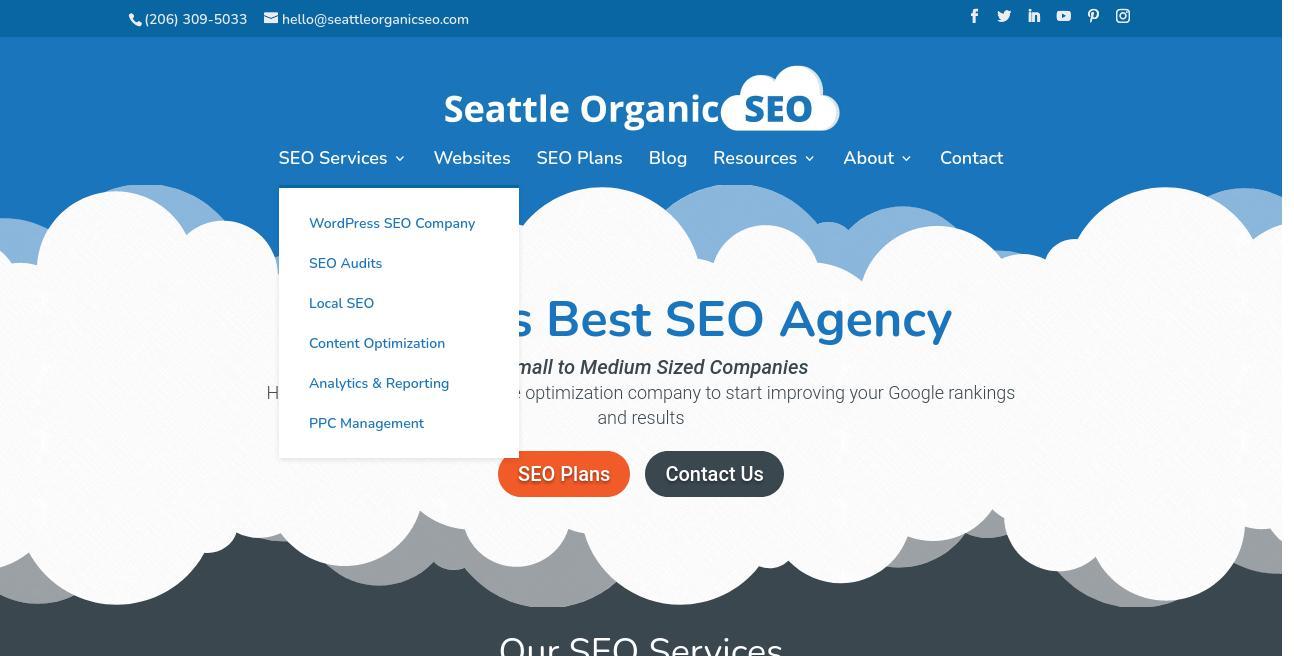 Seattle Organic SEO website