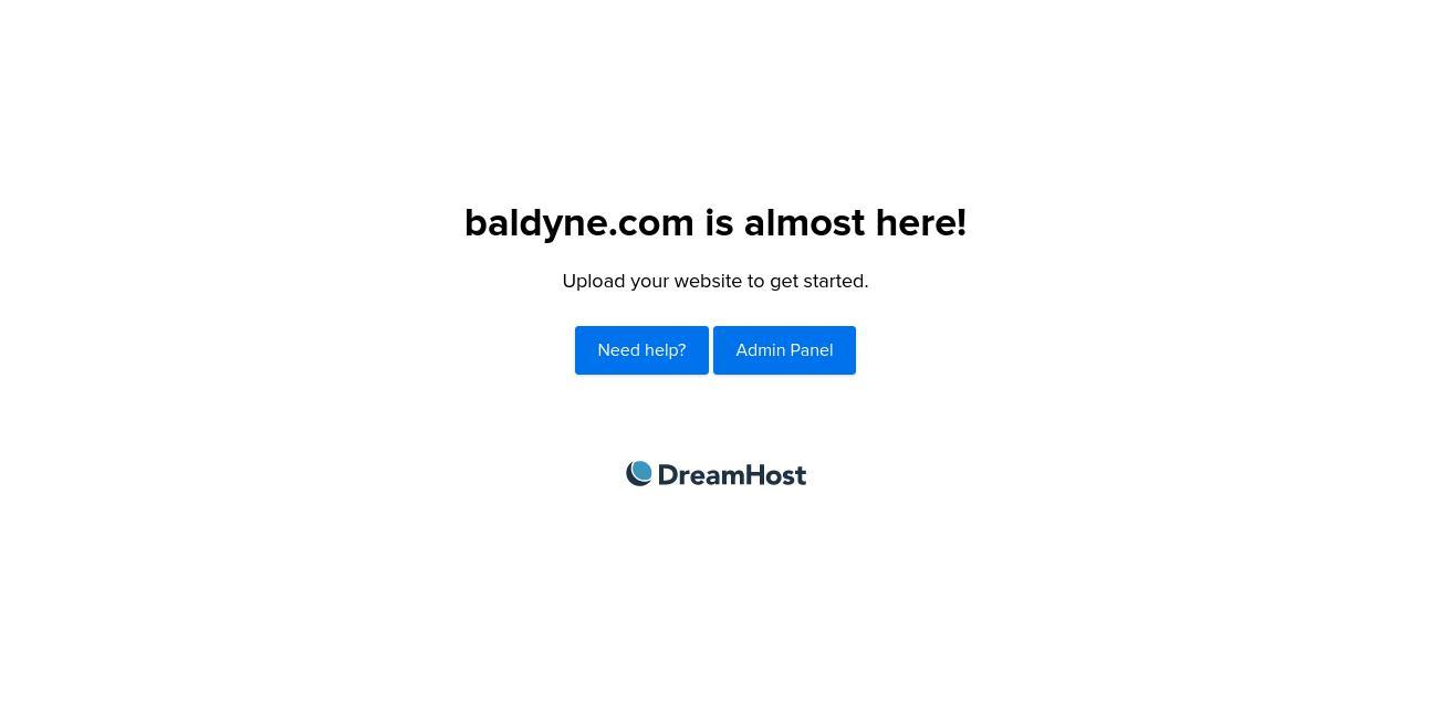Baldyne Digital Marketing website