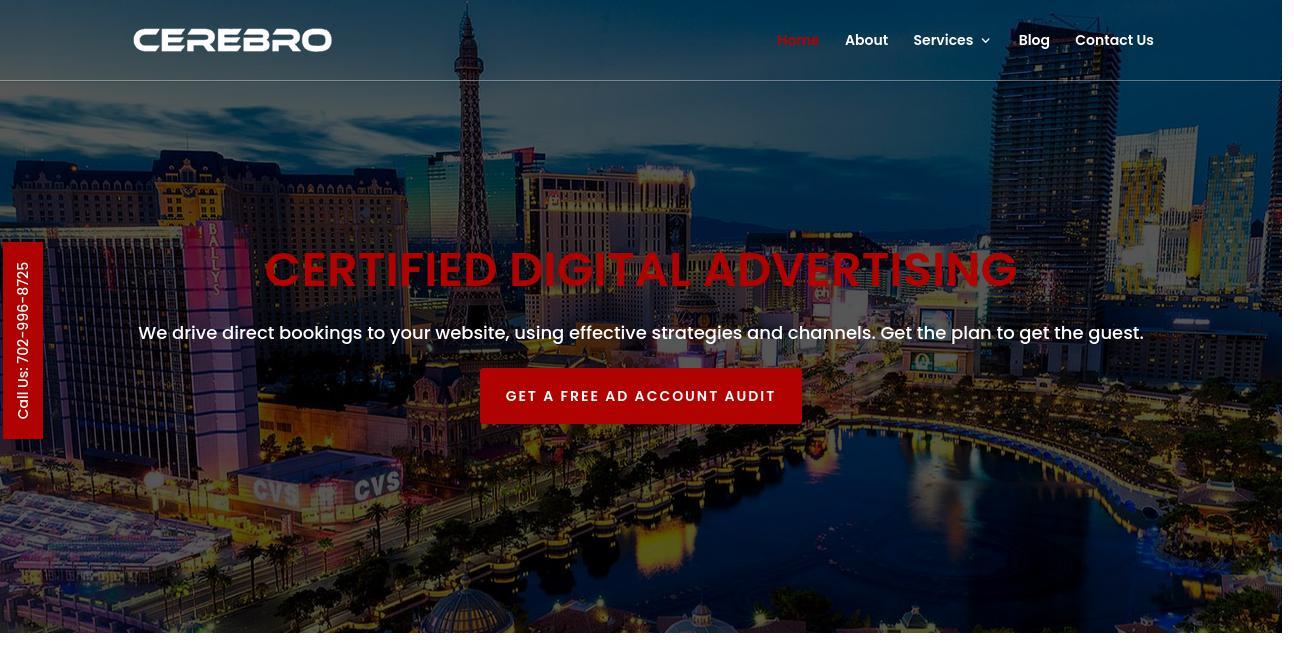 Cerebro Marketing website